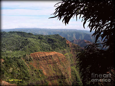 Ocean Photograph - Waimea Canyon And Marshes by Paulette B Wright