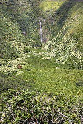 Feild Photograph - Waimoku Falls IIi by Jenna Szerlag