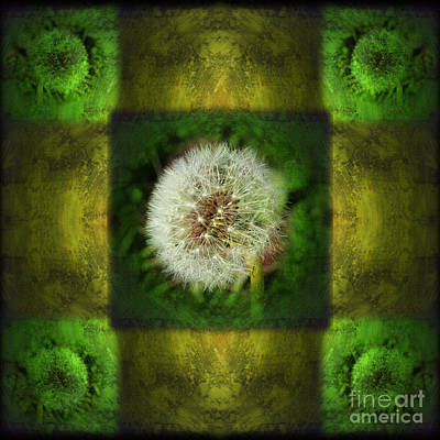 Dandelion Digital Art - Waiting For A Wish by Laura Iverson