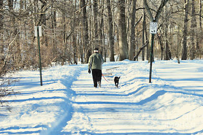 Dogs In Snow Photograph - Walking The Dog by Paul Ward