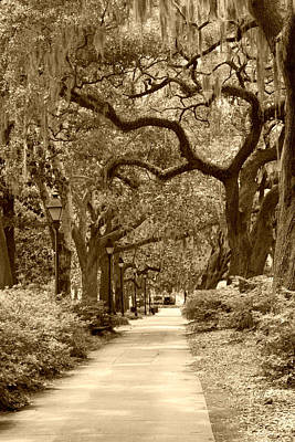 Pathway Digital Art - Walking Through The Park In Sepia by Suzanne Gaff