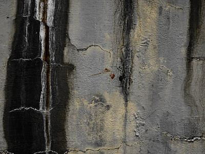 Wall Texture Number 5 Print by Carol Leigh