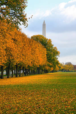 Washington In The Fall Print by Steven Ainsworth