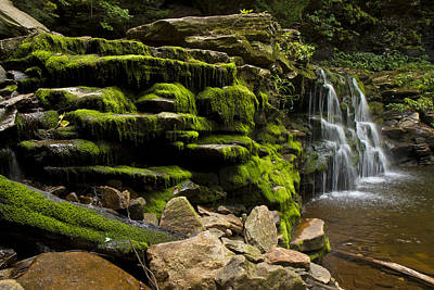 Photograph - Water Fall Rickett Park Pa by Stephen EIS