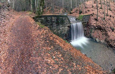Arezzo In Water Colors Photograph - Waterfall And Path With Leafs In The Wood by Michele Berti