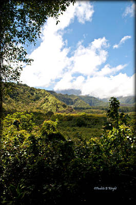 Decor Photograph - Waterfall Landscape - Hana Highway by Paulette B Wright