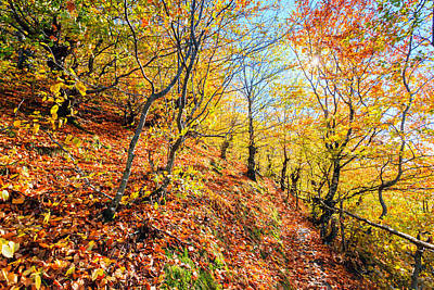 Autumn Landscape Photograph - Way To The Chapel by Evgeni Dinev