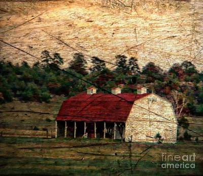 Weathered Barn Print by Michelle Frizzell-Thompson