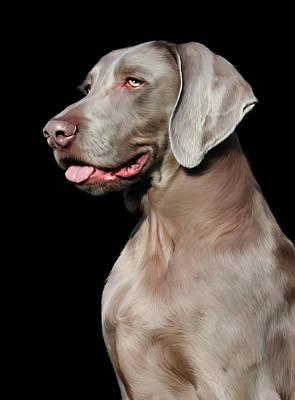 Pup Digital Art - Weimaraner  by Julie L Hoddinott