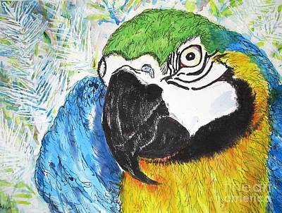 Macaw Mixed Media - What's Up by DJ Laughlin