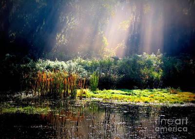 When Morning Hits The Marsh Print by Carol Groenen