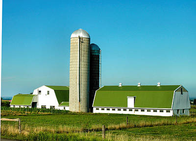 Finger Lakes Photograph - White And Green Barns by Steven Ainsworth