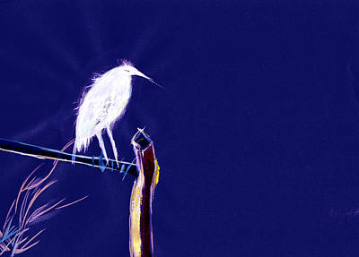 Christmas Holiday Scenery Painting - White Egret by Anil Nene
