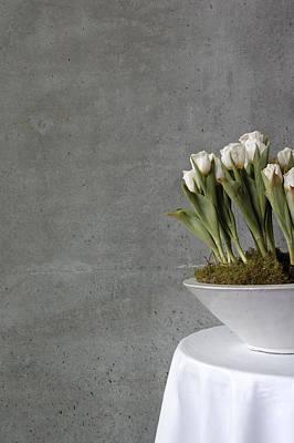 Tulip Photograph - White Tulips In Bowl - Gray Concrete Wall by Matthias Hauser