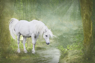 Forest Photograph - White Unicorn At The Water by Ethiriel  Photography