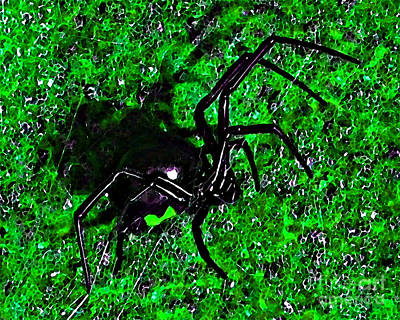 Wicked Widow - Green Print by Al Powell Photography USA
