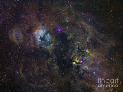 Widefield Image Of Narrowband Emission Print by Filipe Alves