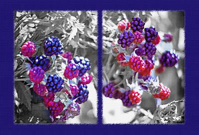 Raspberry Mixed Media - Wild Berries Diptych by Steve Ohlsen