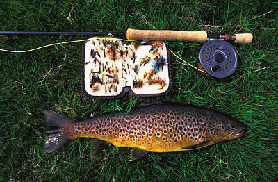 Wild Brown Trout And Fishing Rod Print by Axiom Photographic
