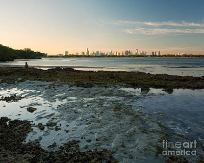 Miami Skyline Photograph - Wild Miami Sunset by Matt Tilghman