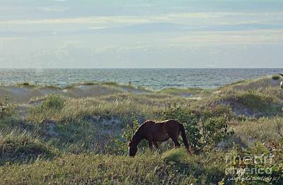 Wild Mustang Print by Laurinda Bowling