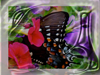 Wild Wings Butterfly Print by Debra     Vatalaro