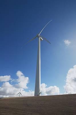 Zeeland Photograph - Wind Turbine by Colin Cuthbert