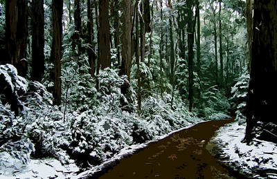 Winding Forest Trail In Winter Snow Original by Phill Petrovic