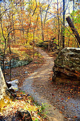 Winding Trail Print by Marty Koch