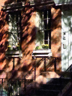 Window Boxes Greenwich Village Print by Susan Savad
