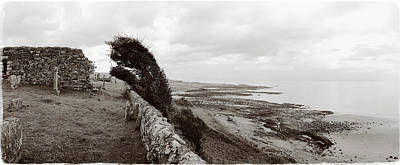 Windswept Machrihanish Original by Jan Faul