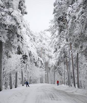 Forest Photograph - Winter Activities by Ari Salmela