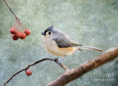 Titmouse Digital Art - Winter Berries by Betty LaRue