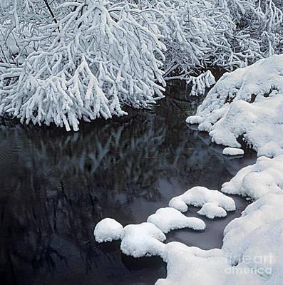 Winter Brook Print by Elena Filatova