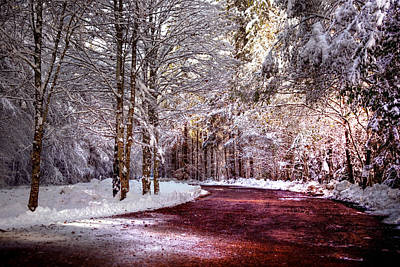 Winter Drive Print by Anthony Citro