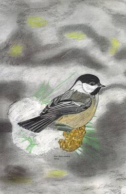 Chickadee Drawing - Winter Freeze by Don  Gallacher