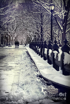 Winter In The Central Park New York 2 Print by Design Remix
