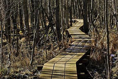 Boardwalk Photograph - Winter On Miller Pond Board Walk by LeeAnn McLaneGoetz McLaneGoetzStudioLLCcom