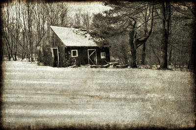 Winter Textures Print by Evelina Kremsdorf