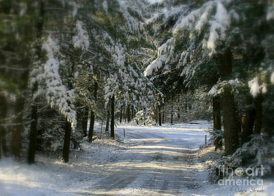 Winter's Tranquility Print by Debra Straub