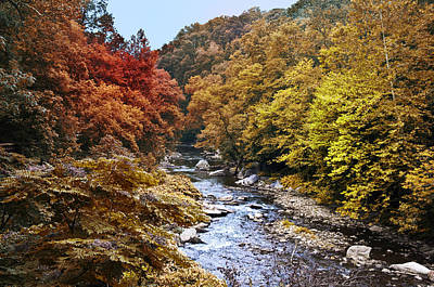 Phillies Digital Art - Wissahickon Creek In Fall by Bill Cannon