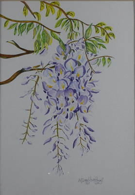 Watercolor Wisteria Painting - Wisteria by Mary Donaldson Powell