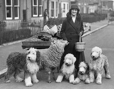 Woman And Pets Print by Fox Photos