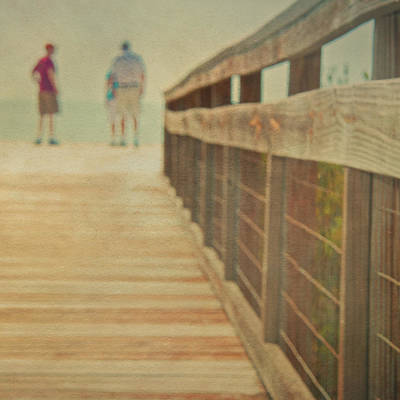 Wire-mesh Photograph - Wood And Mesh Bridge by Lynda Murtha