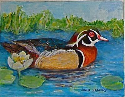 Wood Duck Print by Joan Landry