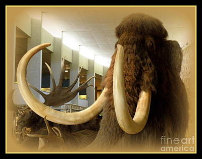 Wooly Mammoth Print by Lainie Wrightson