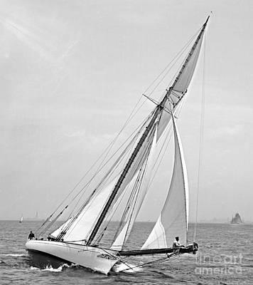 Yacht Shamrock In New York Harbor 1895 Bw Print by Padre Art