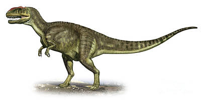 Yangchuanosaurus Shangiouensis Print by Sergey Krasovskiy