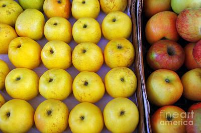 Yellow Apples Print by Carlos Caetano
