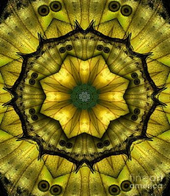 Yellow Butterfly Wing Kaleidoscope Mandala Print by Janeen Wassink Searles